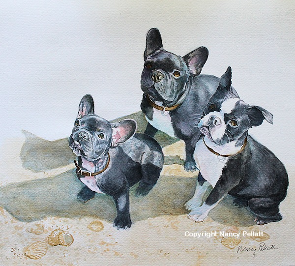 Frenchies and Friend